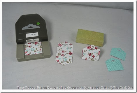 2014_03_Tag Topper Punch Box Card, Amanda BAtes, The Craft Spa 003