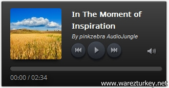 Amazing Audio Player Enterprise 3.6