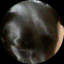 Image Google de fabienne Bahia