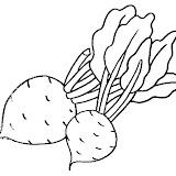 verduras-02.jpg