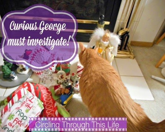 The cat investigates Christmas deocrations ~ Circling Through This life ~ Taking Down the Christmas Decorations