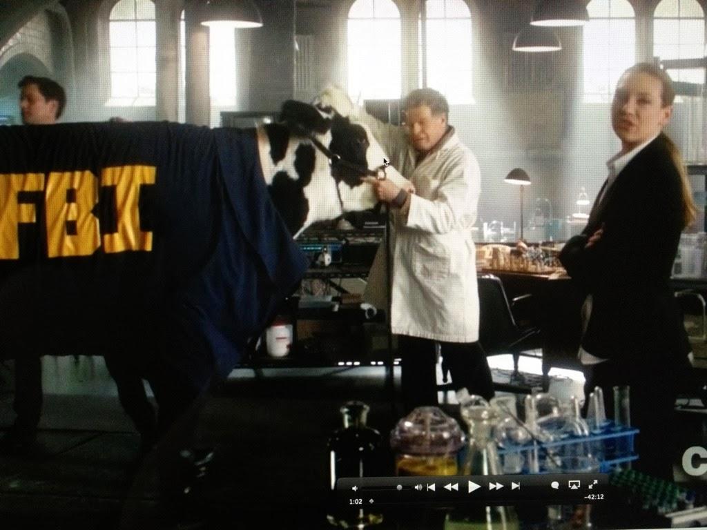 El Rostro de Muerte: Serie del Día: Fringe, Cuarta Temporada