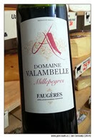 Domaine-Vallambelle-Myllepeyers-Faugères-2012