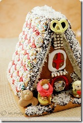 GingerbreadHouse02framed2