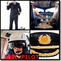 PILOT- 4 Pics 1 Word Answers 3 Letters