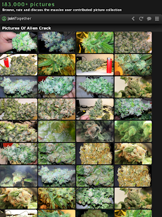 Weed Strains 3D: joinTogether - screenshot thumbnail