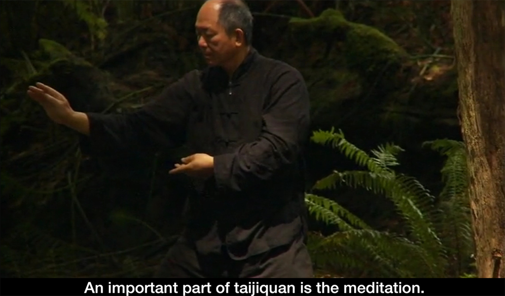 Yang Tai Chi for Beginners 2&3- screenshot
