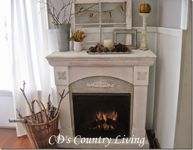 Fireplace main