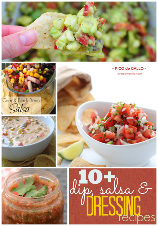 Over 10 Dip, Salsa & Dressing Recipes at GingerSnapCrafts.com #recipes #dips #salsa #linkparty #features_thumb[2]
