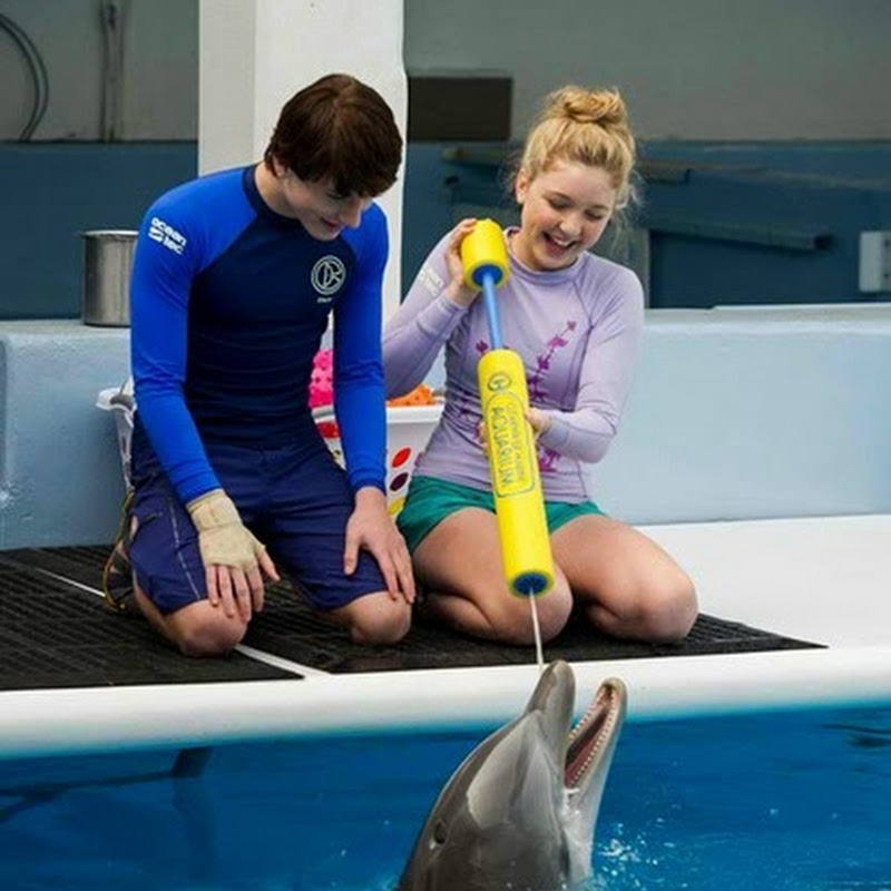 "Winter's Fight Is Not Yet Over in ""Dolphin Tale 2"""