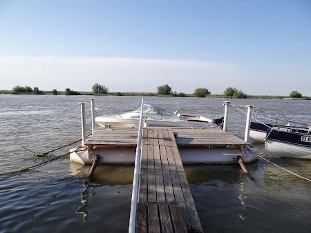 38. Tururi cu salupa prin Delta Dunarii.JPG