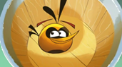 angry-birds-seasons-orange-bird-285x155