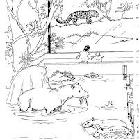 animaatjes-dierentuin-06626.jpg