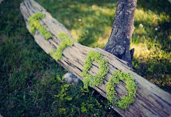 54  clayton austin photo
