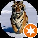 tygrysko