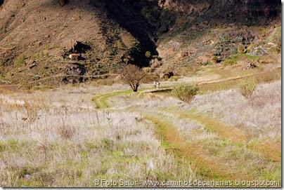 7059 Cruz Tejeda-Artenara-Guardaya(Horqueta)