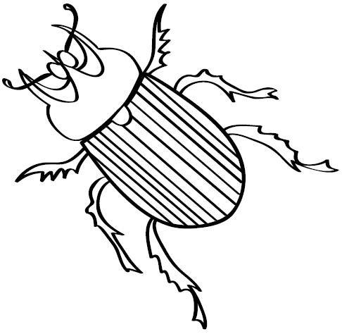 Dibujos De Escarabajos Para Colorear