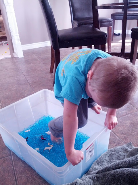 Child climbing into arctic sensory bin