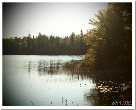Fall Lake Photo