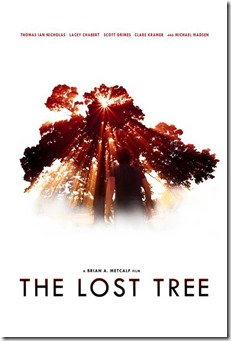 the-lost-tree