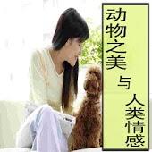 动物之美与人类情感(全2册)