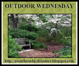 Outdoor-Wednesday-logo_thumb4