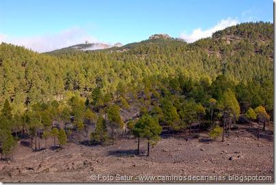 7478 La Goleta-La Candelilla(Pico Las Nieves)