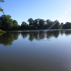 Loire rive droite en aval de Marclopt photo #1236