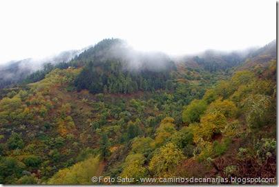 6823 Barranco Andén-Cueva Corcho(Barranco Andén)