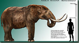 Mastodon   Wikipedia  the free encyclopedia