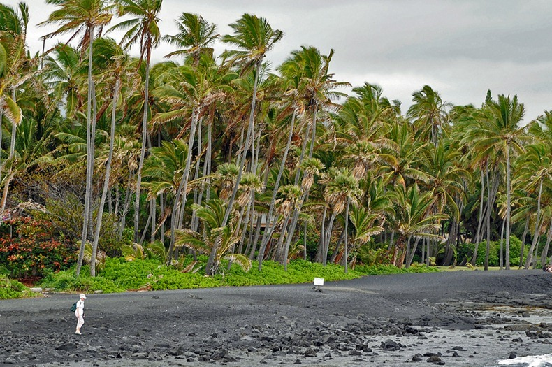 Punaluu Black Sand Beach, Hawaii, HI