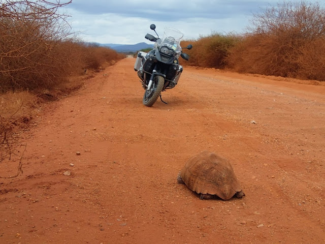 Marsabit to Moyale 003.JPG