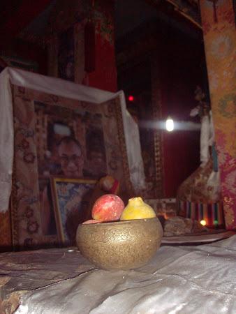 Obiective turistice India: Dalai Lama si ofrandele