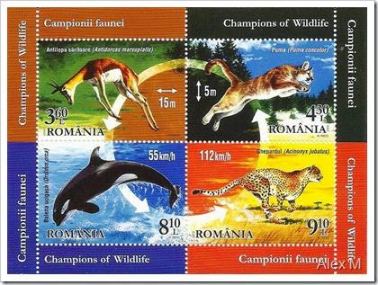 2054_campionii faunei-bloc