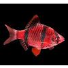 Fishfish212