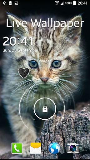 無料个人化Appの猫のアニメーション壁紙 記事Game