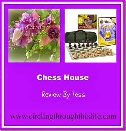 Chess House Review Collage