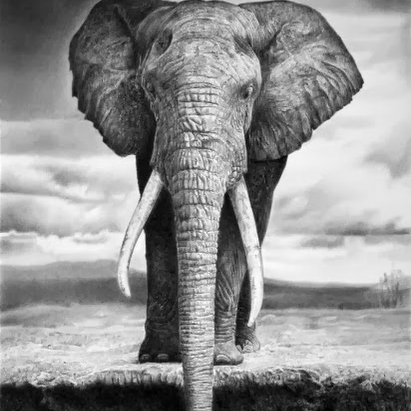 Hyper Realistic Pencil Drawings by Italian Artist Franco Clun.