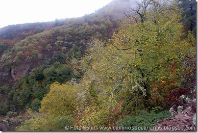 6830 Barranco Andén-Cueva Corcho(Barranco Andén)