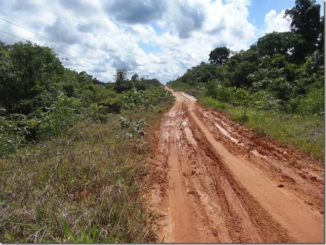 BR-319_Humaita_Manaus_Day_2_DSC05389