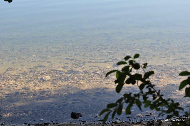 Lac d'Issarlès photo #496