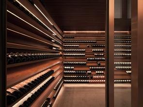 bodega de vinos casa moderna