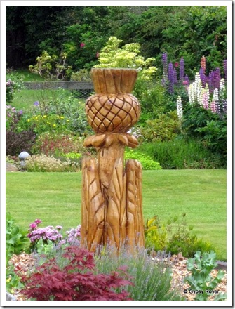 Scottish thistle in wood.