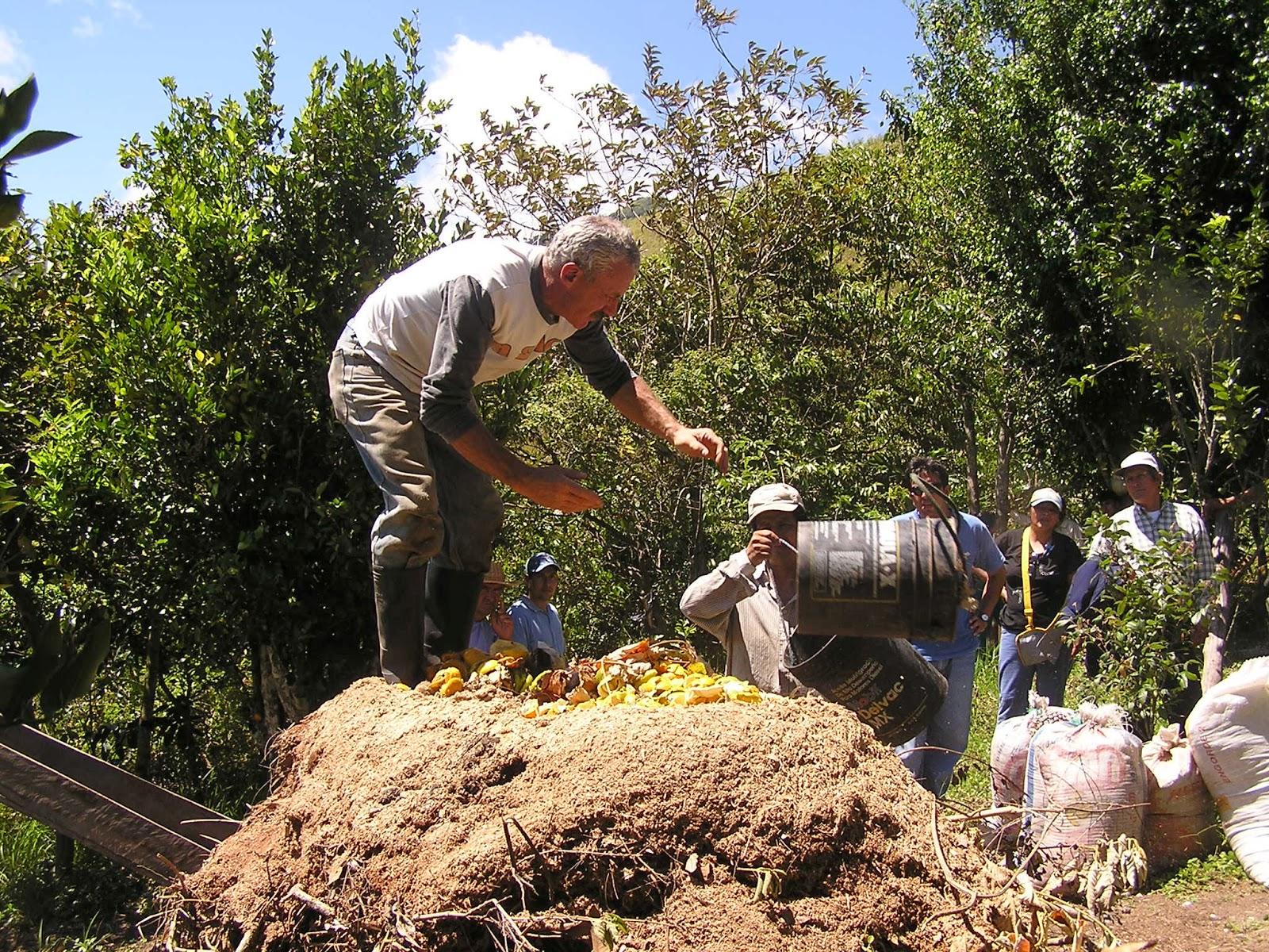 Abono org nico ecuador abono para sus plantas - Abono organico para plantas ...