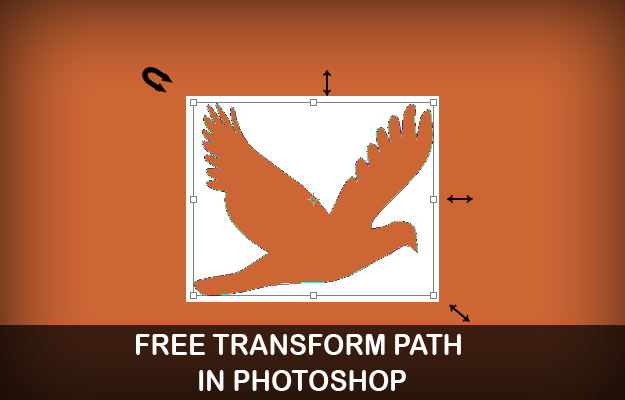 photoshop free transform