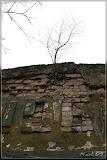 da wachsen sogar die Bäume aus den Häusern
