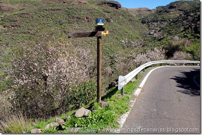 7567 El Aserrador-Vega Acusa(Higuera Canaria)