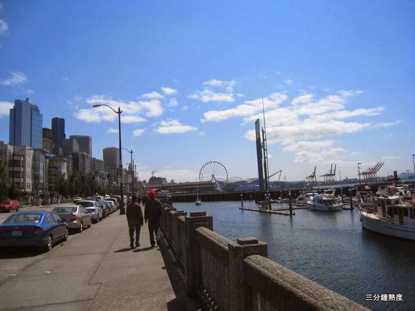 從遠處看西雅圖摩天輪