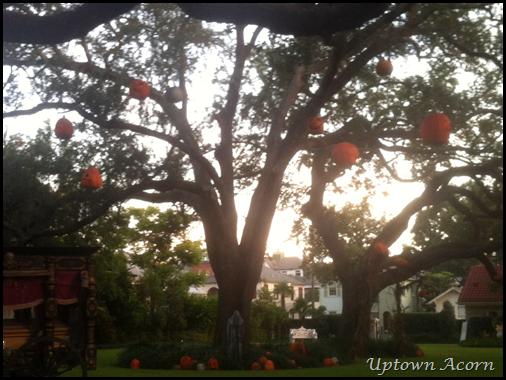 pumpkins in tree 2