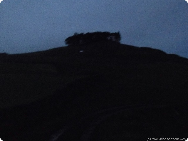 kirkcarrion in the dark